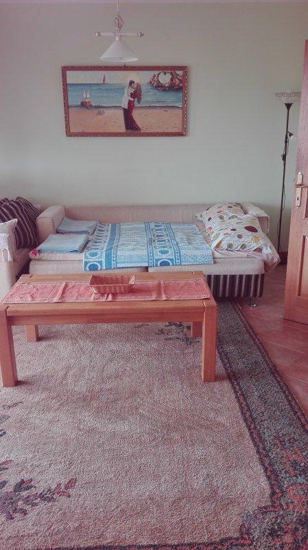 porodicni lux apartman