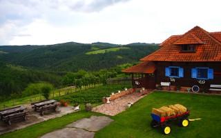 Apartmani smeštaj, Gornji Milanovac, selo Leušići