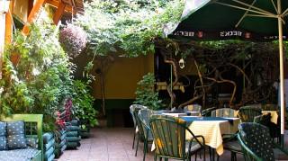 Apartmani smeštaj, Bačka Topola, Restoran domaće kuhinje GURMAN se nalazi u samom srcu Severne  Vojvodine, u centru Bačke Topole, u ulici Petefi brigade br. 8.